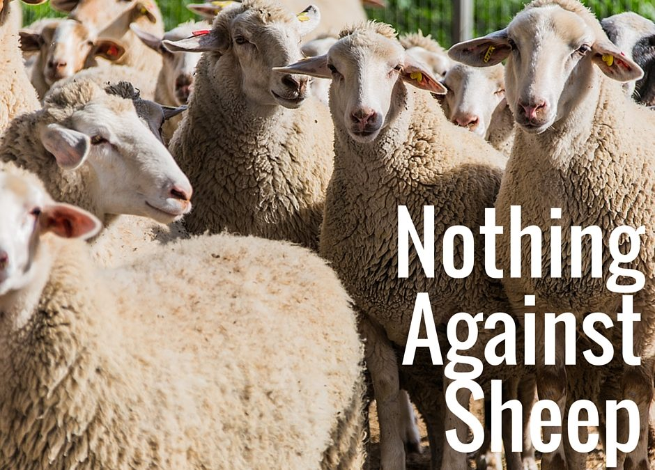 Nothing Against Sheep
